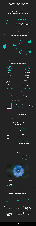 Wedio Anamorphic lens infographic summary