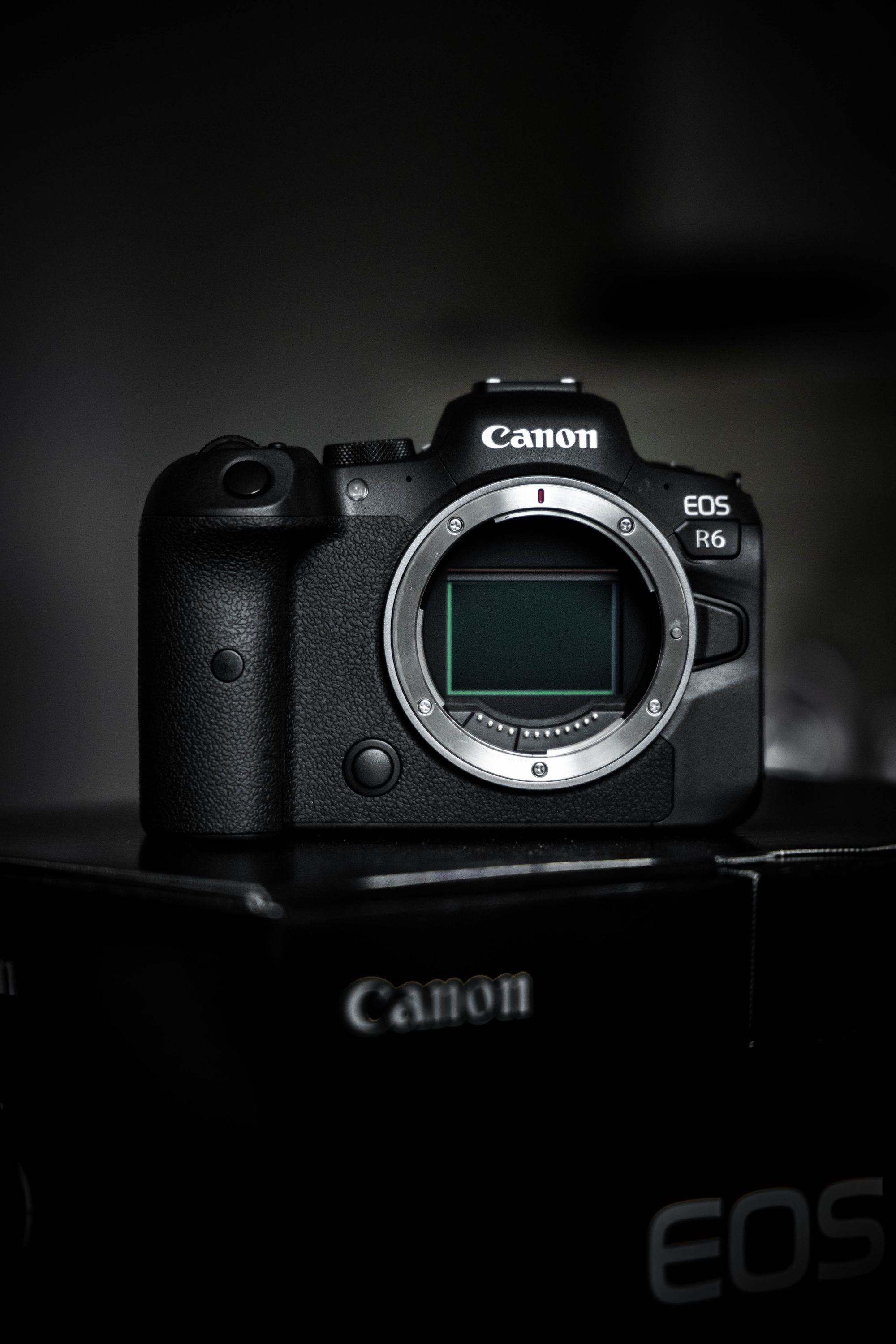 Canon R6 for best music video camera