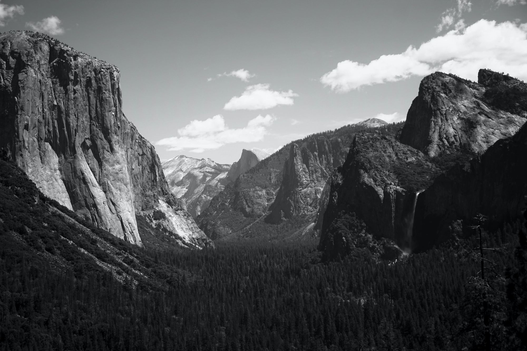 Ansel Adams was important in changing how we perceive photography